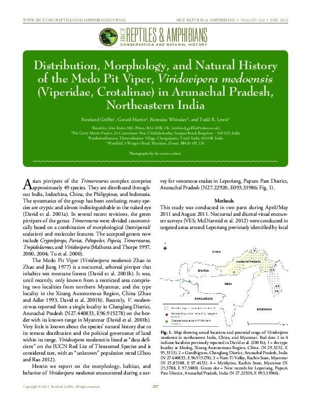 Distribution, morphology, and natural history of the medo pit viper, Viridovipera medoensis (Viperidae, Crotalinae) in Arunachal Pradesh, Northeastern India Thumbnail