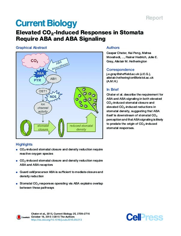 Elevated CO2-Induced Responses in Stomata Require ABA and ABA Signaling Thumbnail